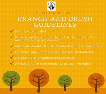 Branch and Brush